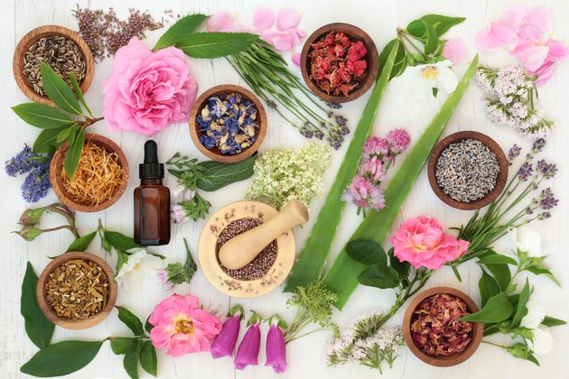 Healing Flowers and Herbs