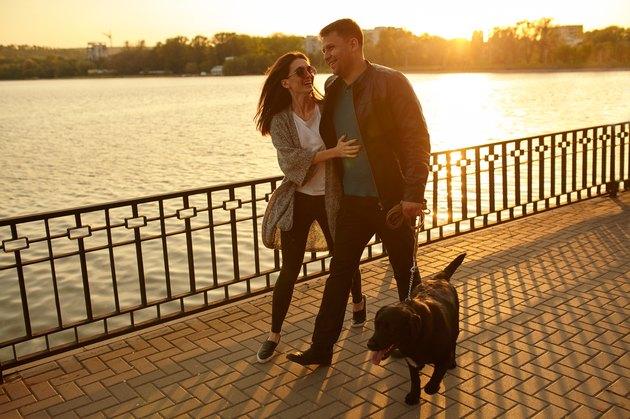 Full length of a happy couple walking dog
