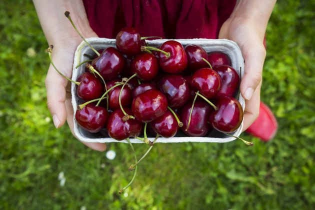 Girls hands dress holding cardboard box of cherries, close-up