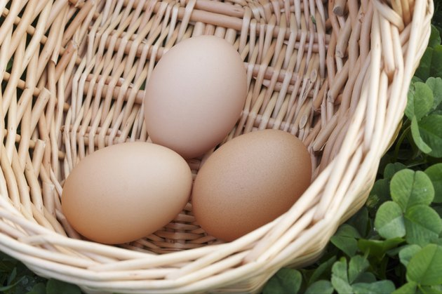Eggs in a basket on a bed of clover