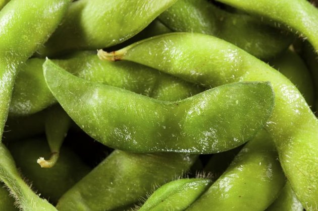 A close-up of steamed edamame.