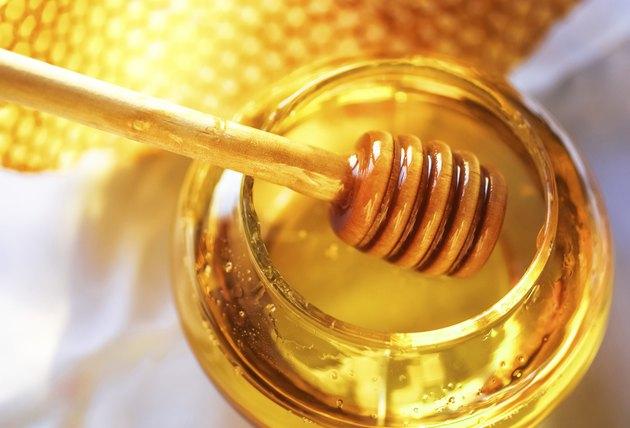 golden honey bee