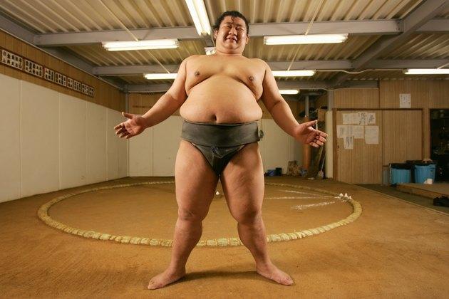 Young sumo wrestler in gymnasium, portrait