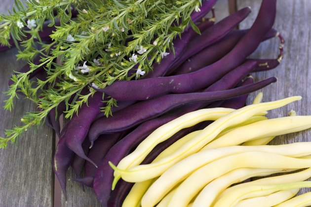 Purple and yellow beans lying on a wooden table