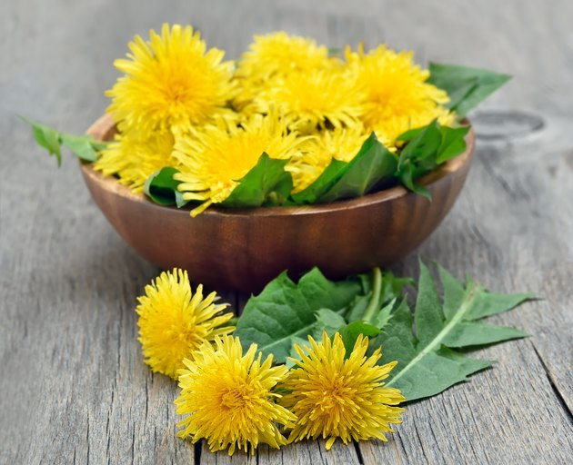 Dandelions on wooden table