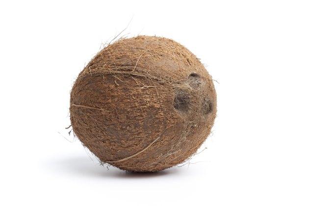 Whole single coconut