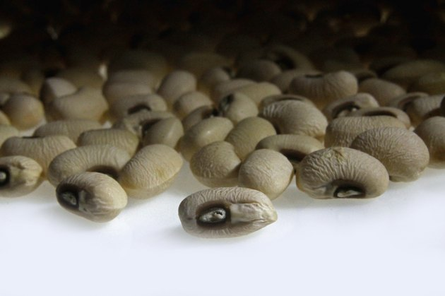 dried Black-Eyed Peas, Cowpea