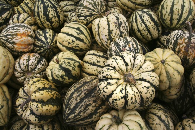 Green and White Gourds