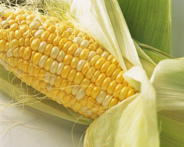 Corn on cob, high angle view, close up
