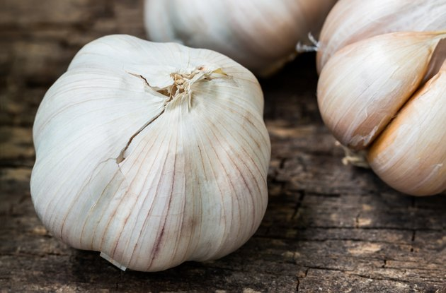 Close up. Still life with garlic on wooden background