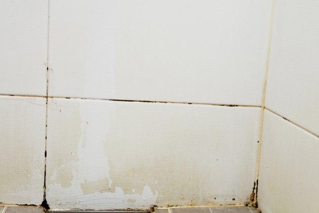 corner mold