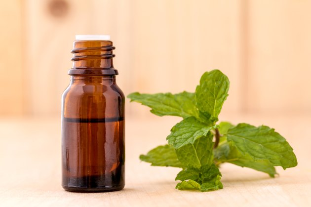 Bottle of mint essential oil on wooden background .