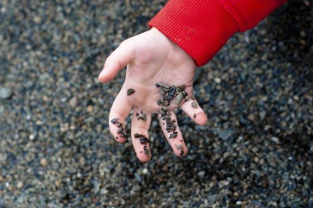 little hand holding pebbles