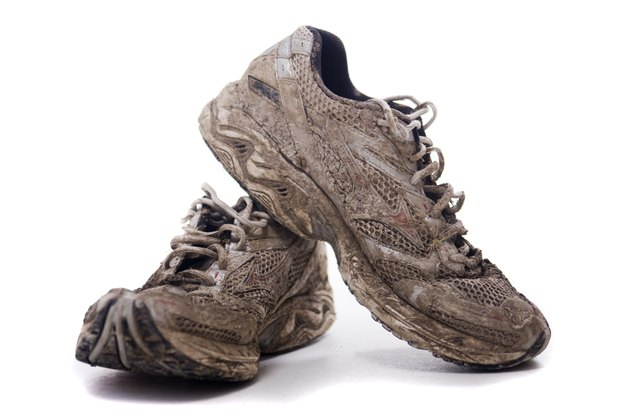 Muddy Sport shoes