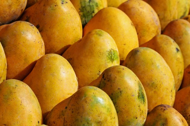 Full frame of mangoes