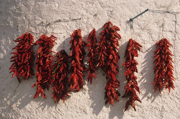Red peppers hanging on wall, drying, Andalusia, Spain, close-up