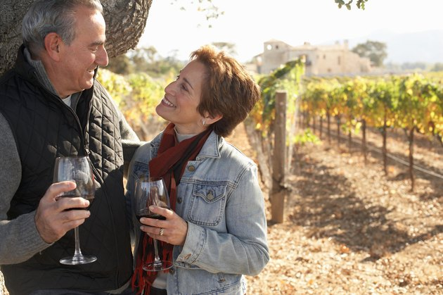 Mature couple standing in vineyard, holding glasses of red wine