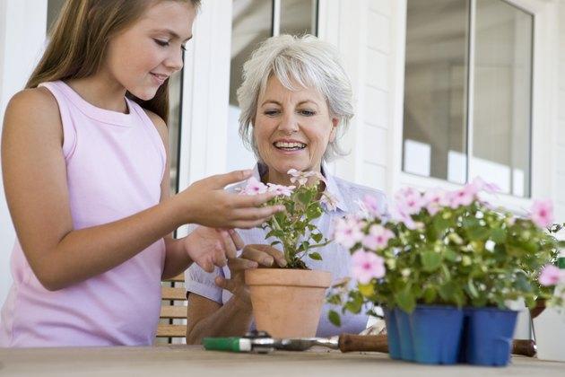 Granddaughter helping grandmother plant flowers