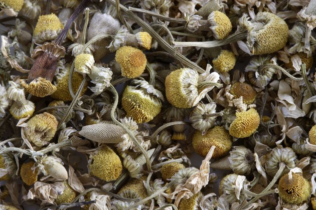 German chamomile tea leaves