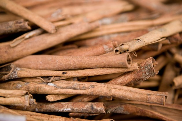Close-up of cinnamon sticks