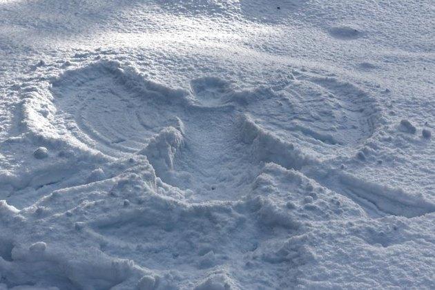 Snow angel in forest near Aegviidu parish.