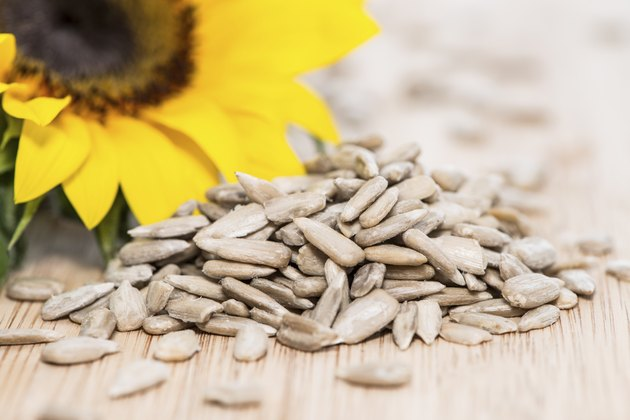 Sunflower with Seeds on wood