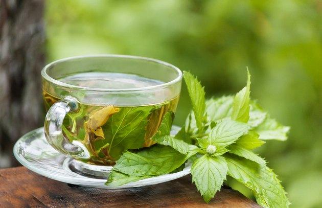 morning green mint tea at garden