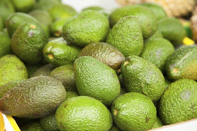 Pile of fresh green avocados