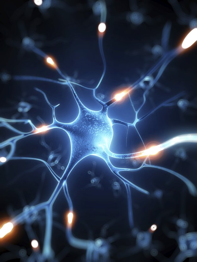 active nerve cell illustration
