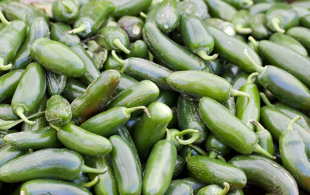 Pile of Jalapeno Peppers