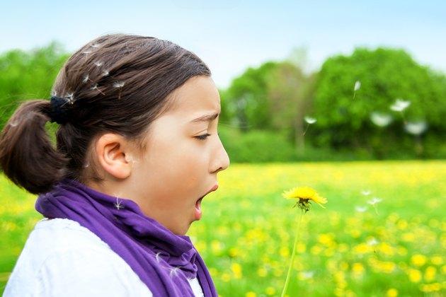 Allergy Hayfever Child sneezing