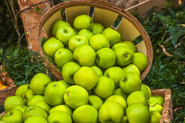 Green Apples in a Bushel