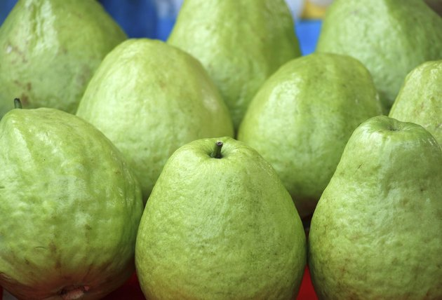 Fresh Green Guavas