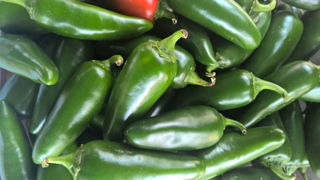 Pimenta Jalapeño Jumbo