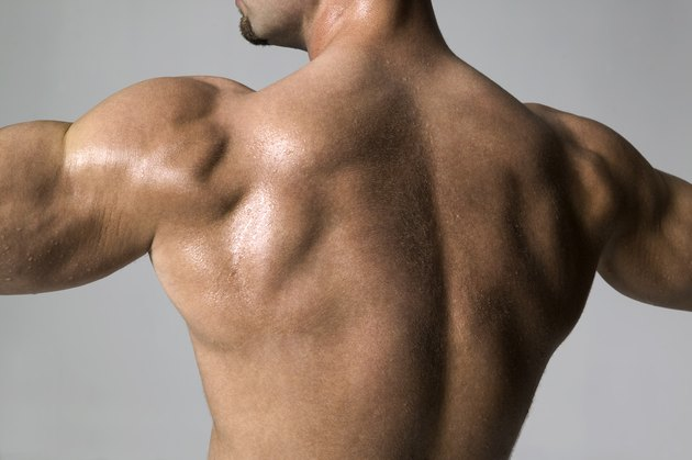 medium shot of a male bodybuilder as he flexes his back muscles
