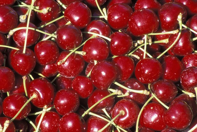 High angle view of bing cherries
