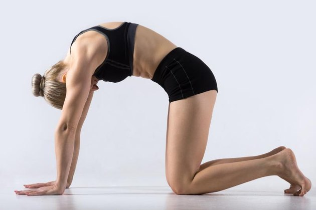 Sporty beautiful young woman practicing yoga, working out, doing Cat Pose, Marjaryasana, exercise for flexible spine and shoulders, asana paired with Cow Pose on the inhale, studio