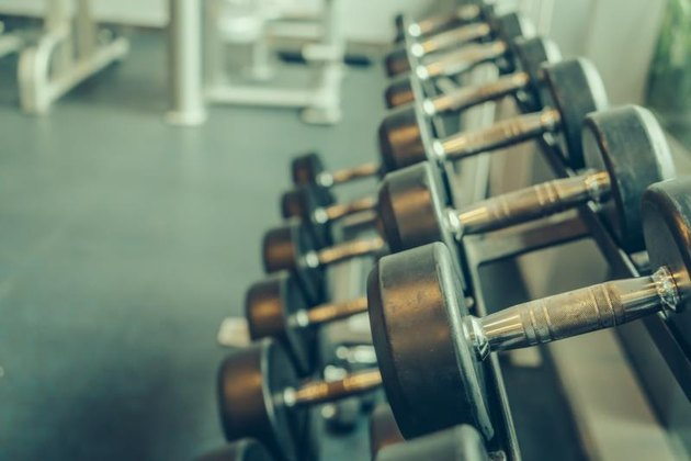 Dumbbells on a rack in the gym.