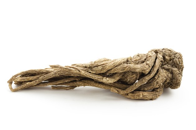 Angelica sinensis(Traditional Chinese Medicine)