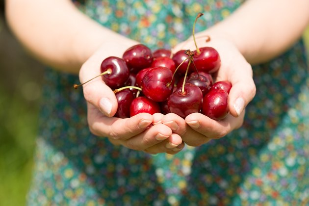 Close up of a woman holding some cherries
