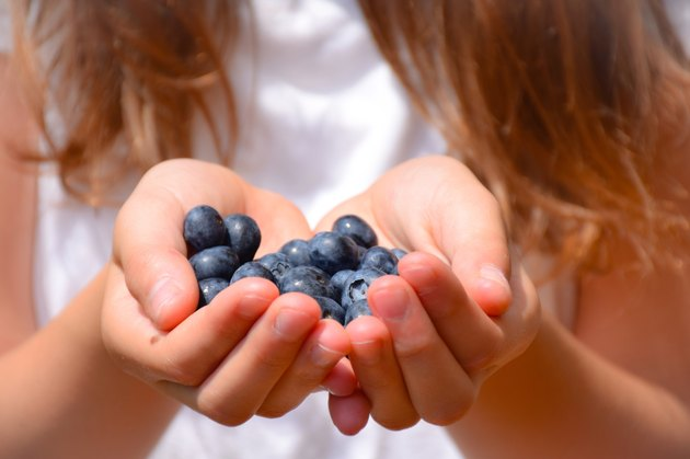 Close-up of girls Hands holding blueberries
