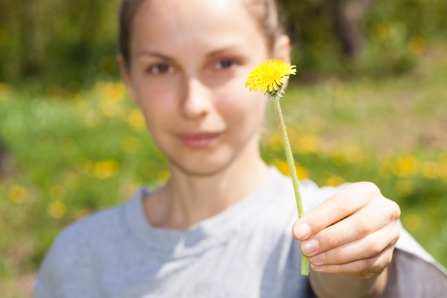 female hand holds a dandelion flower
