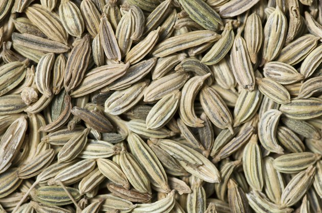 Background made of fennel seeds