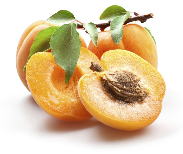 Apricots isolated