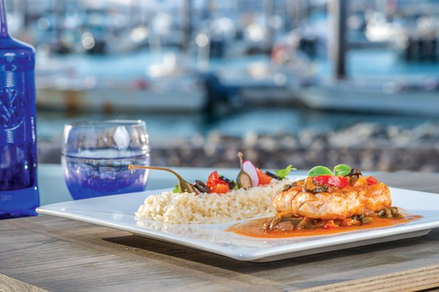 Sea dish grilled fish steak in gravy with vegetables and