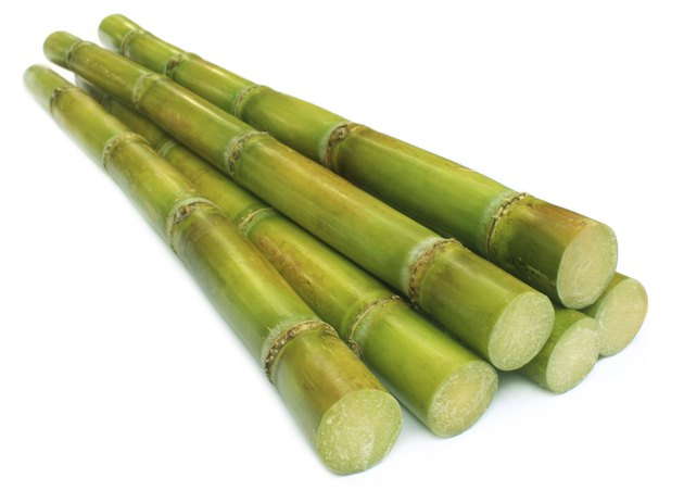 Bunch of fresh sugar cane