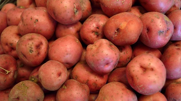 Red new potatoes in letterbox size