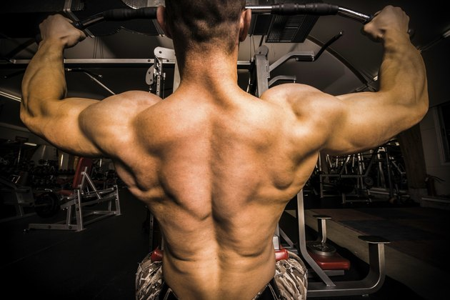 Bodybuilder With Big Back In the Gym