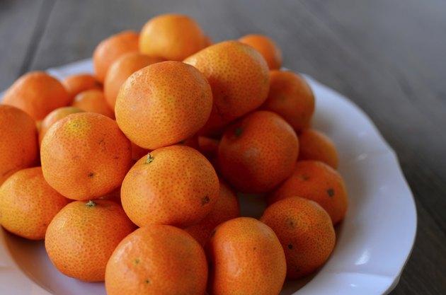 Tropical Oranges
