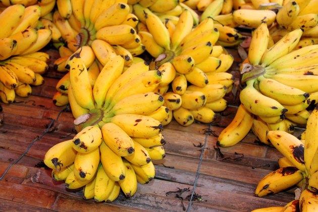 Dainty bananas or Pisang Mas